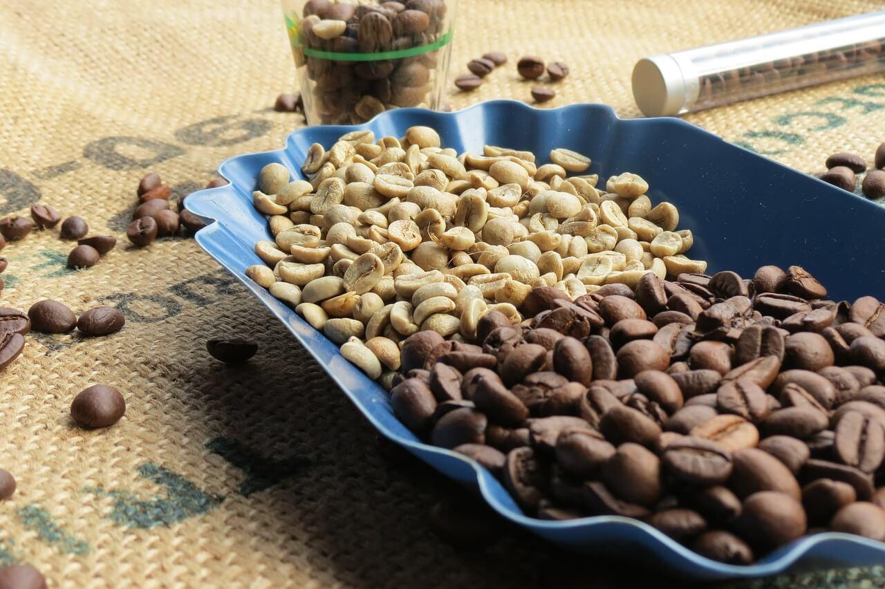 jak odchudza zielona kawa