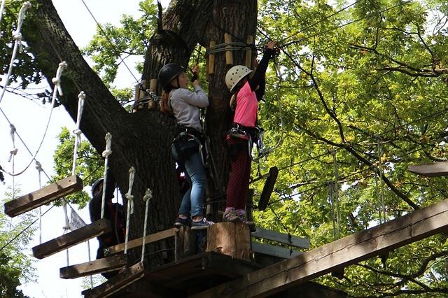 Park linowy – rozrywka i aktywny wypoczynek dla dorosłych i dzieci