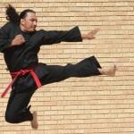 karateka-karate-kung-fu-walka-skok-kopniecie