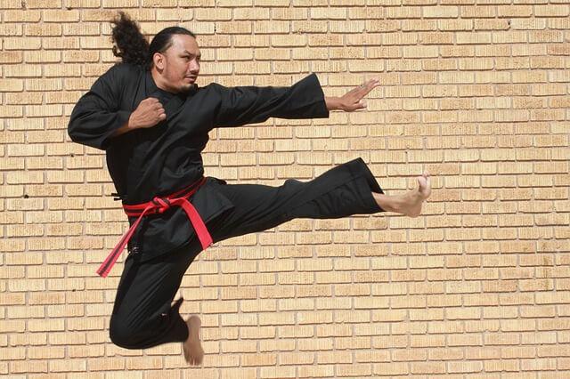 mistrz wschodnich sztuk walki