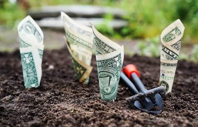 Pieniądze rosnące z ziemi