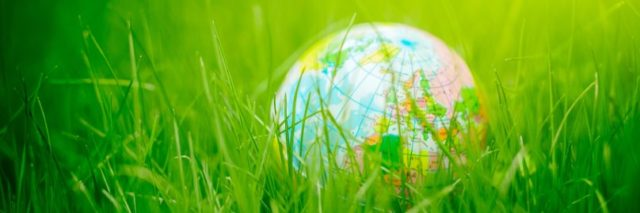 Globus w trawie